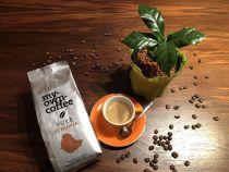 PURE Äthiopischer Sidamo Kaffeebohnen