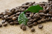 Fairtrade Pure Honduras
