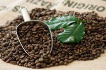 PURE Mexico Altura Kaffeebohnen